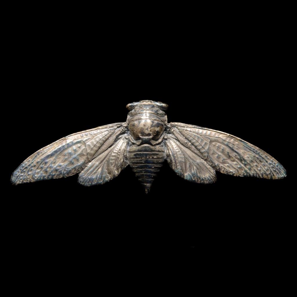 silver_cicada_flat