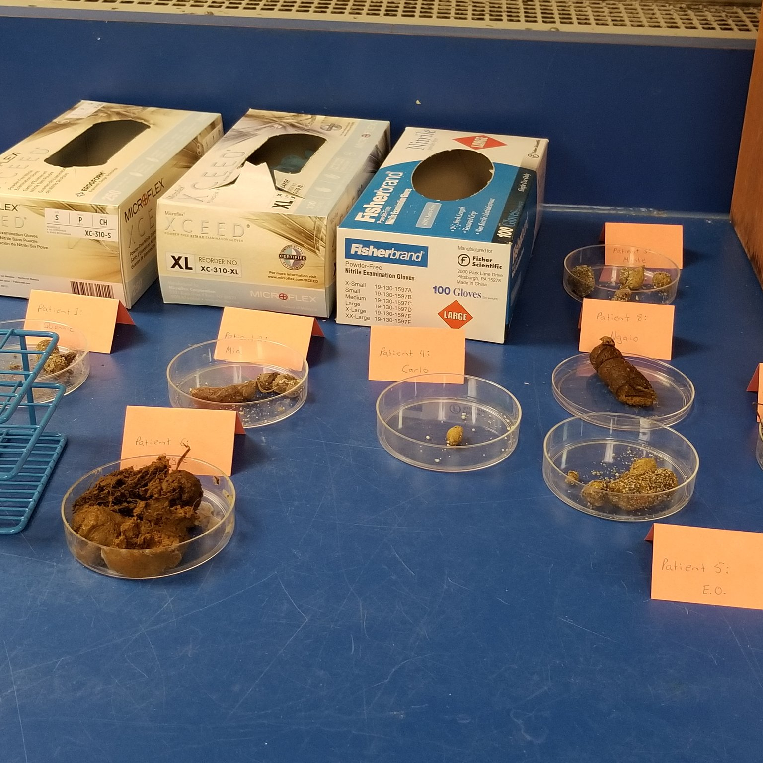 pet fecal samples for parasite identification