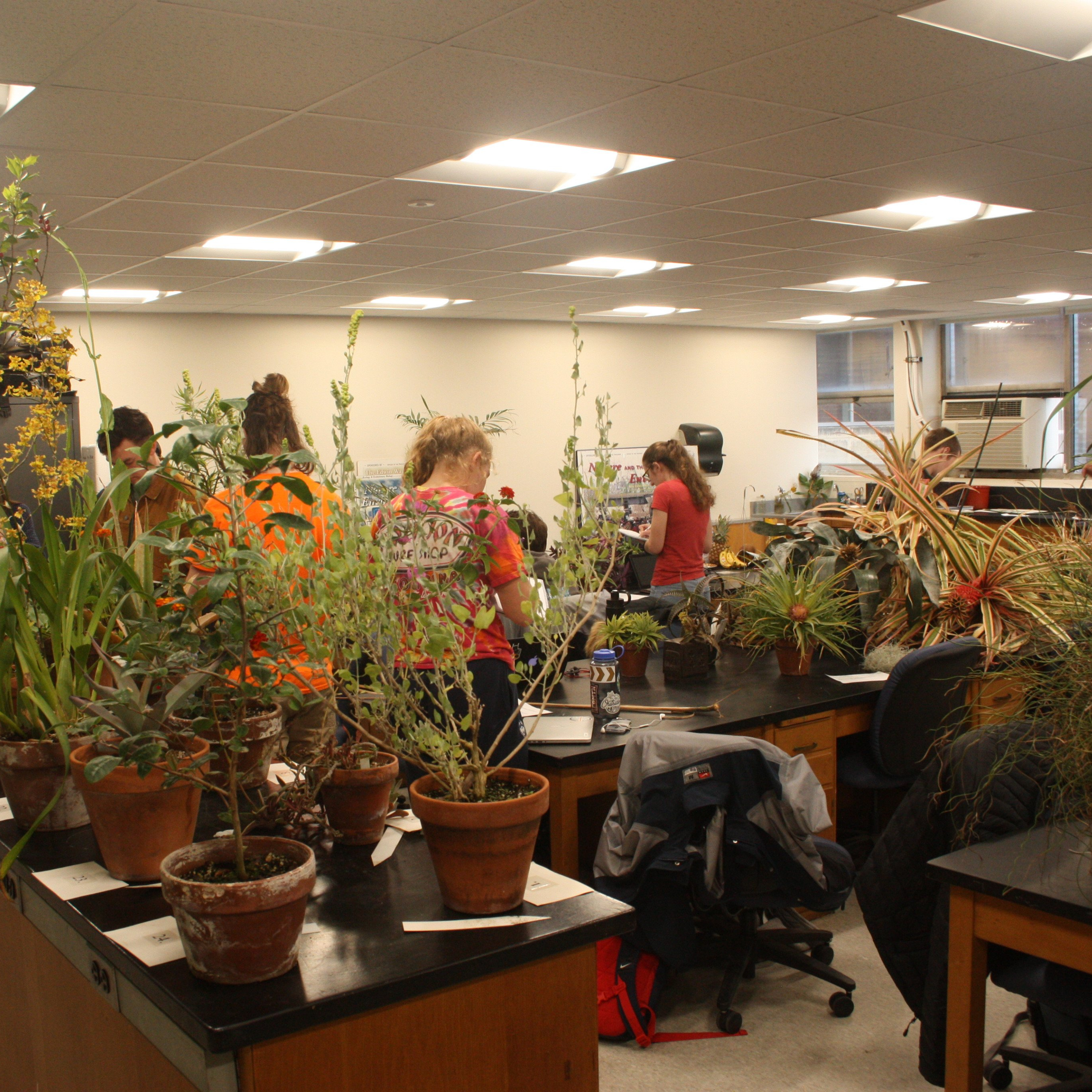 systematic botany classroom with plants
