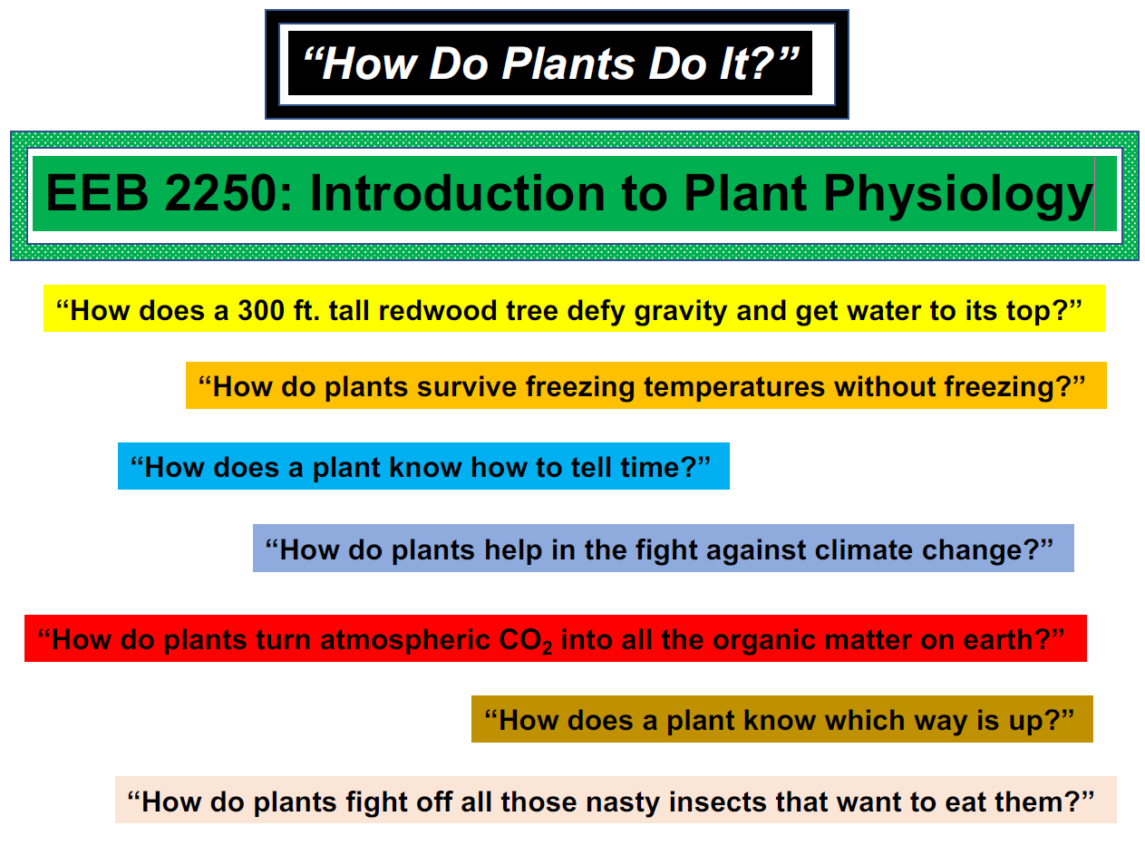 intro to plant physiology
